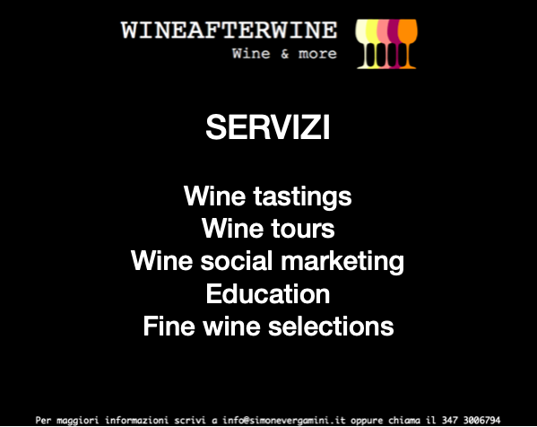 Wineafterwine – Wine Experiences
